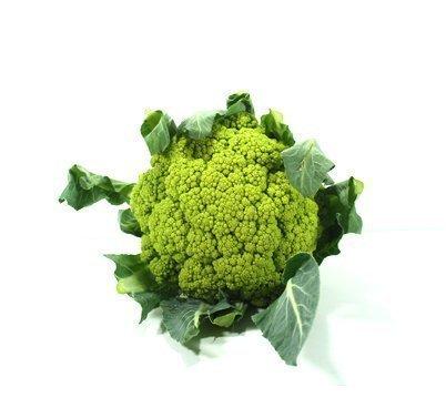 broquil verd