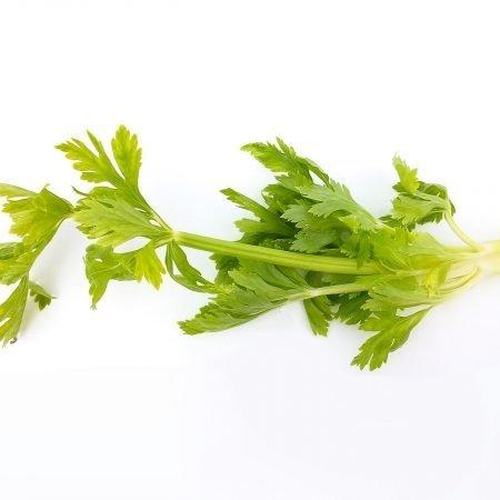vegetables 2085043 1920
