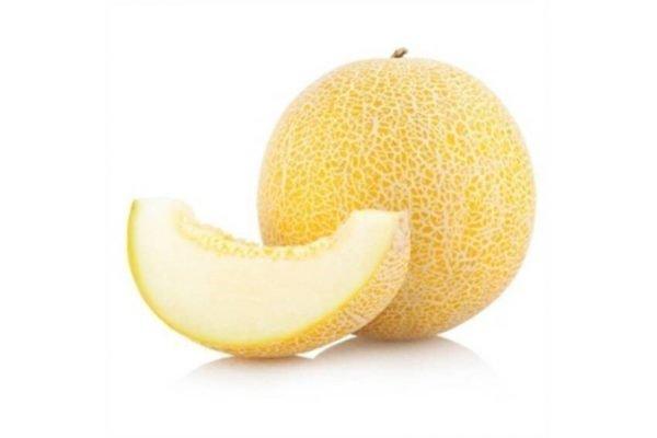 1153 melon galia