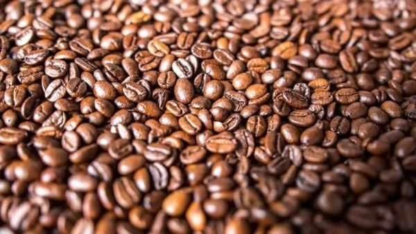2 coffee beans concafe