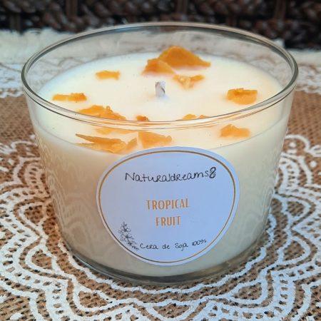 Espelma Cera de Soja Tropical Fruit ECO